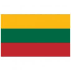 Lietuvos vėliava, medžiaginė